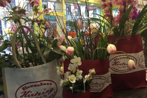 Unsere Blumen